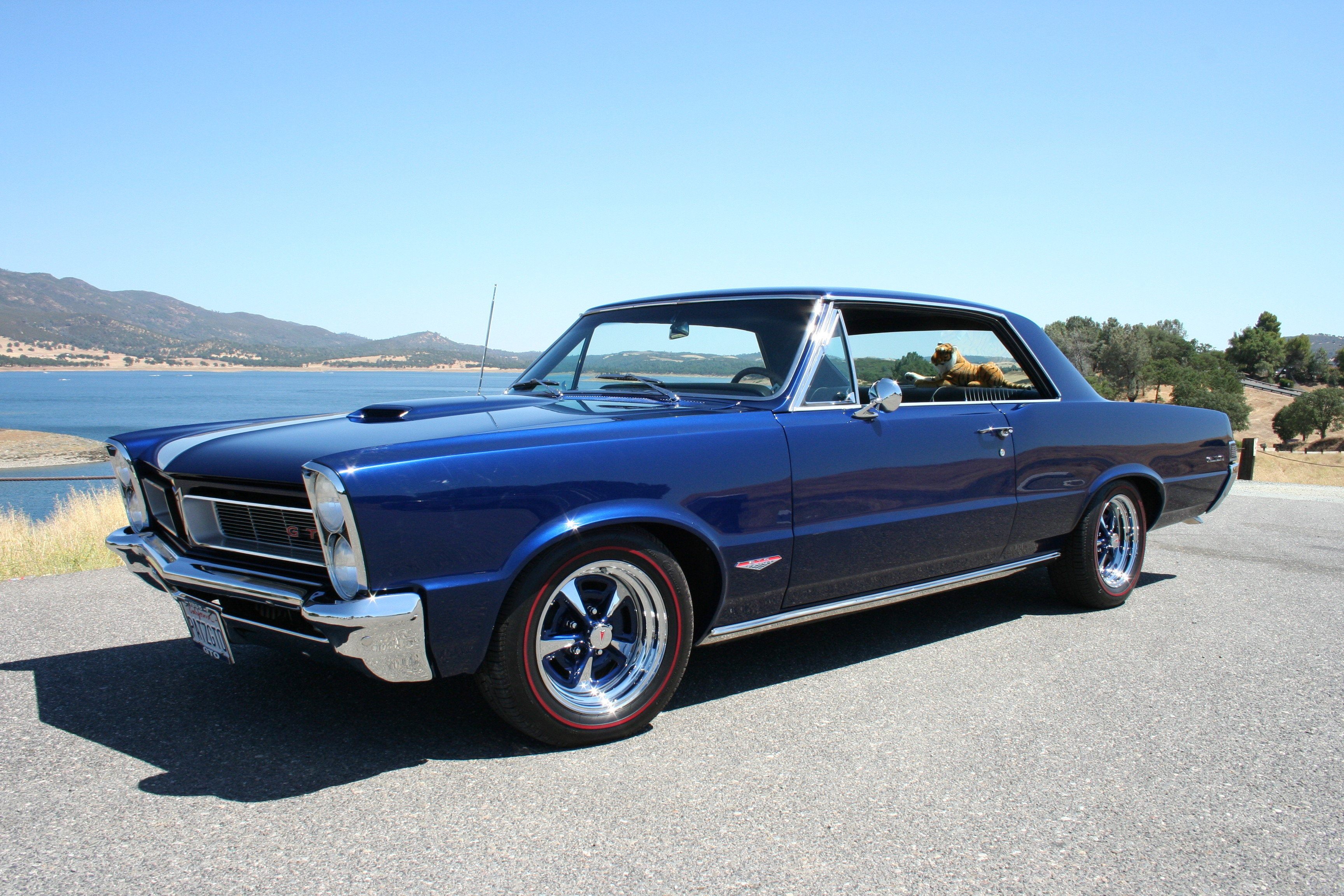 beautiful blue 1965 pontiac gto with my favorite gto wheels. Black Bedroom Furniture Sets. Home Design Ideas