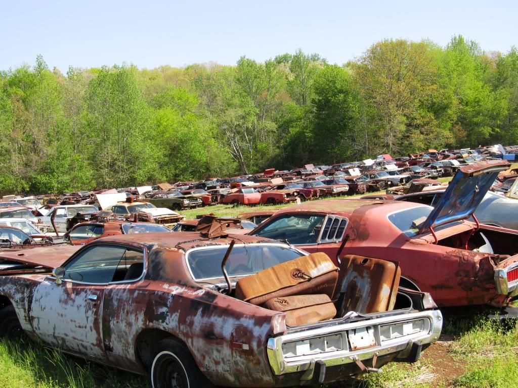 Abandoned Dodge Chargers in a Field in Alabama