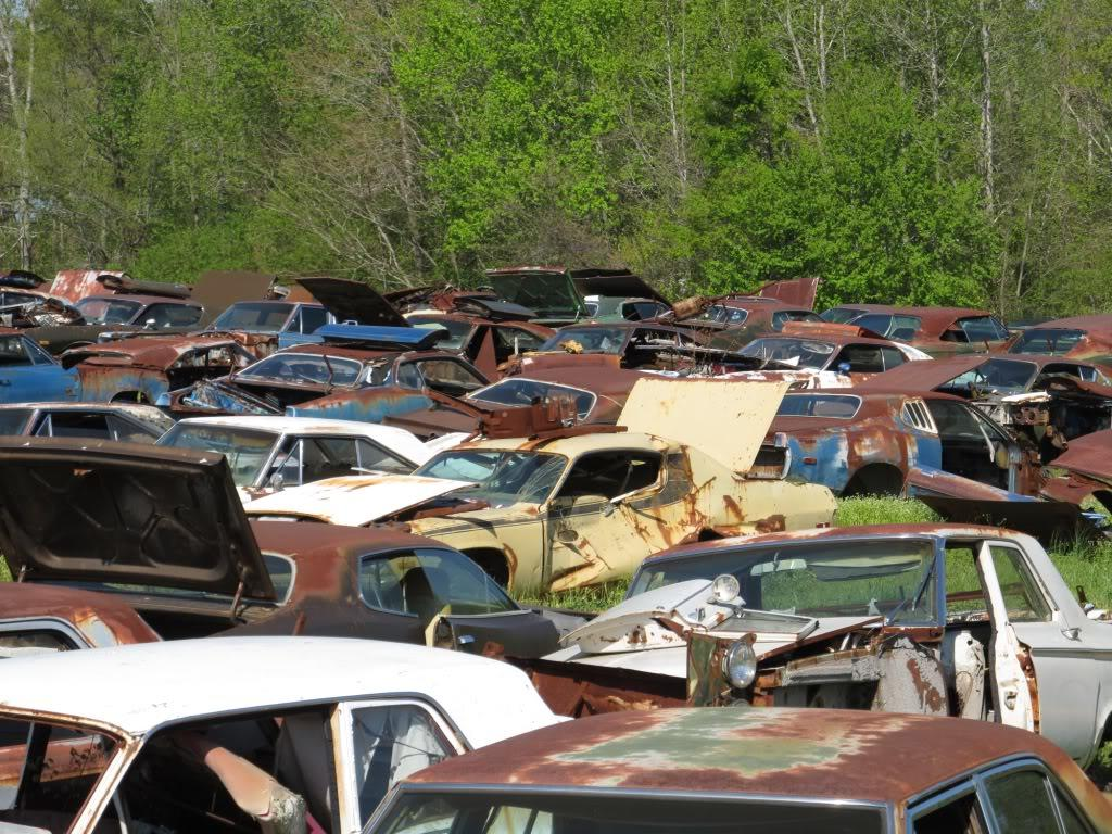 700 Abandoned Classic Dodges Mostly Chargers In Alabama