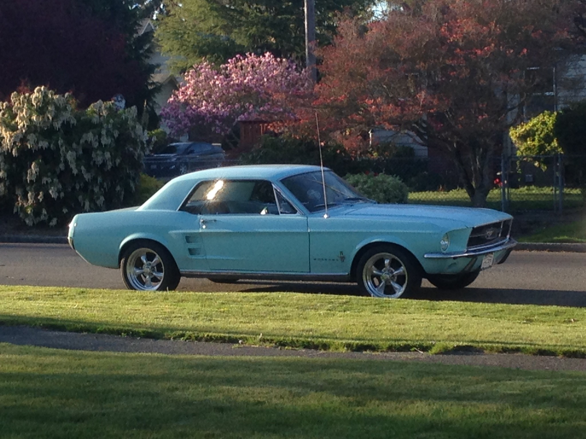 Frost Turquoise 1967 Ford Mustang