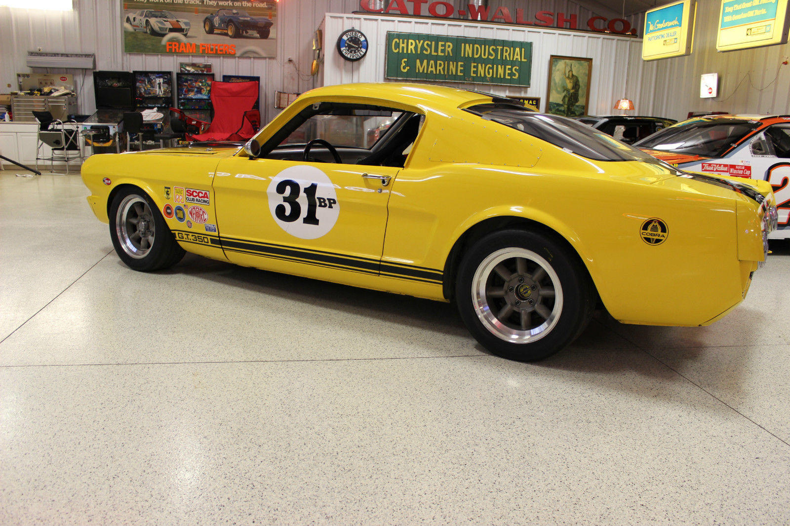 66 Shelby GT350