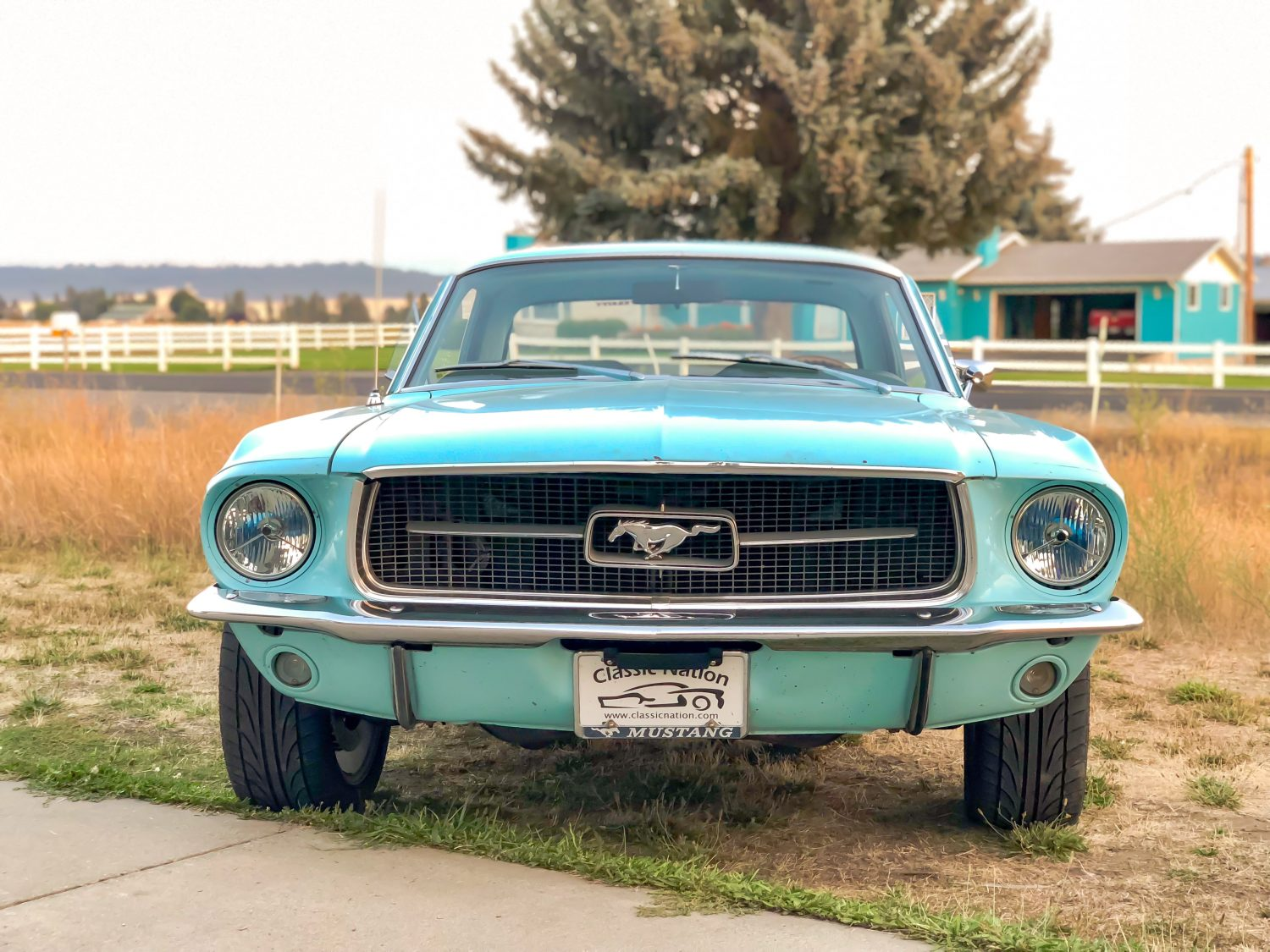 1967 Mustang Front
