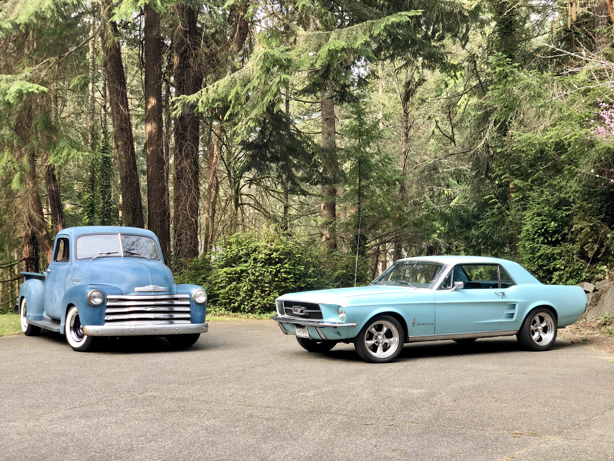 Ford Mustang and chevy 3100